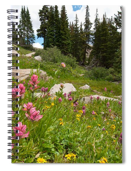 Rosy Paintbrush And Trees Spiral Notebook