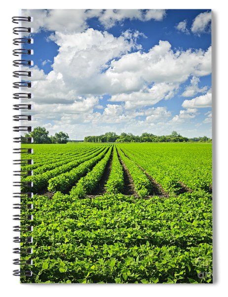 Rows Of Soy Plants In Field Spiral Notebook