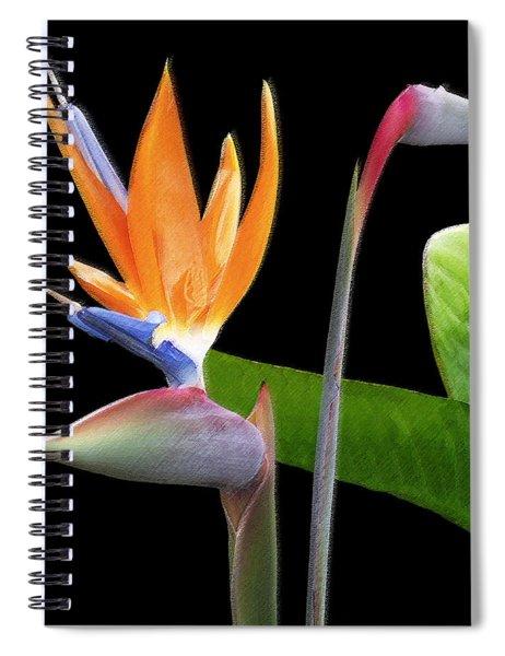 Royal Beauty II - Bird Of Paradise Spiral Notebook