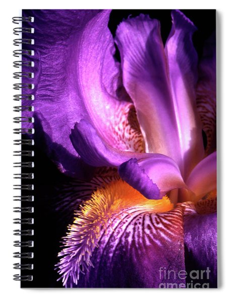 Royal Iris Spiral Notebook