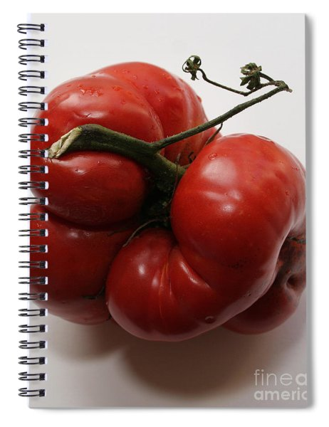 Roys Tomato Spiral Notebook
