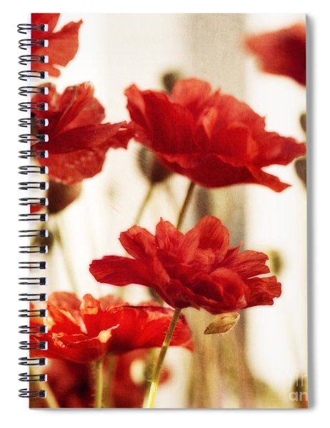 Ruby Red Poppy Flowers Spiral Notebook