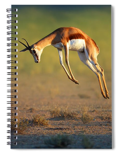 Running Springbok Jumping High Spiral Notebook