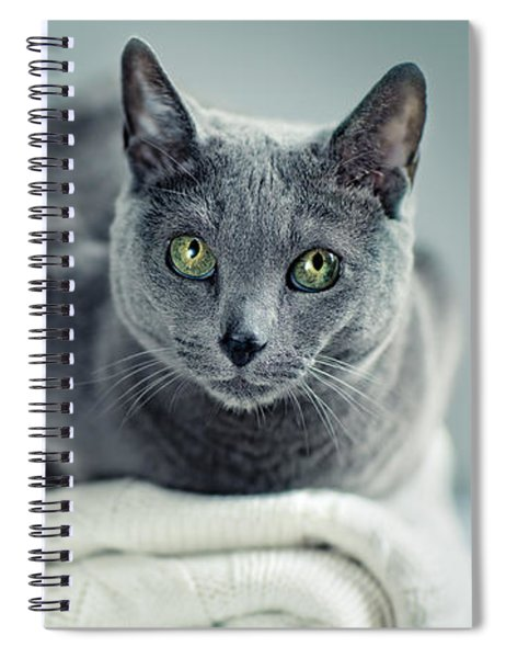 Russian Blue Collage Spiral Notebook