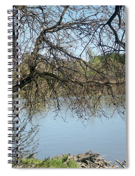Fall At Sacramento River Scenic Photography Spiral Notebook