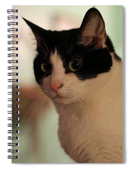 Sadie 2 Spiral Notebook