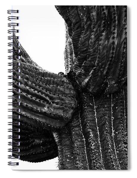 Saguaro Cactus Black And White 3 Spiral Notebook