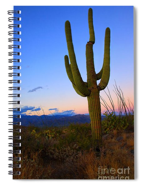 Saguaro Dusk Spiral Notebook