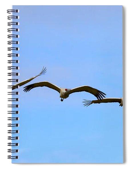 Sandhill Crane Flight Pattern Spiral Notebook