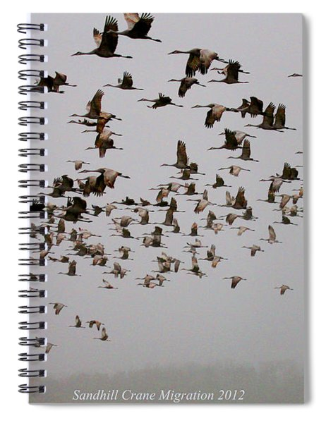Sandhill Crane Migration Spiral Notebook