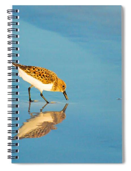 Sandpiper Mirror Spiral Notebook