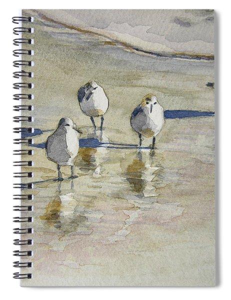 Sandpipers 2 Watercolor 5-13-12 Julianne Felton Spiral Notebook