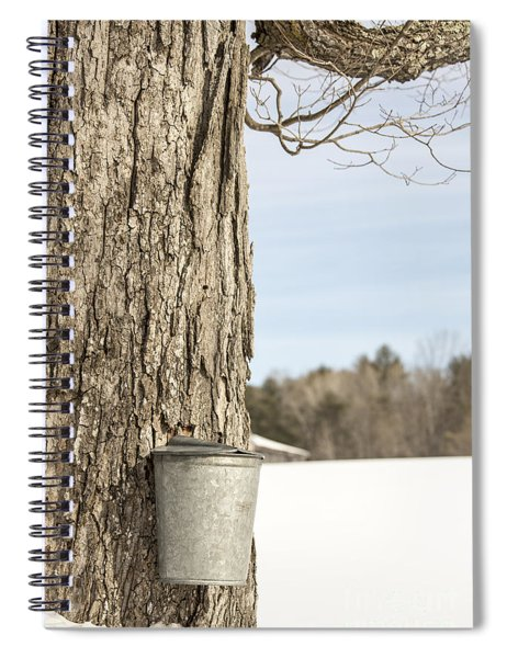 Sap Bucket On Maple Tree Spiral Notebook
