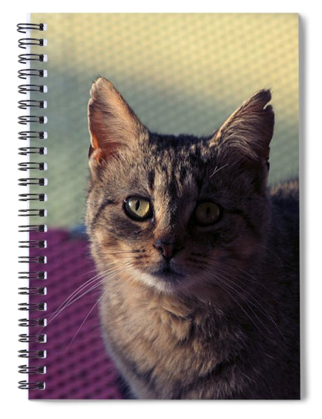 Saw Tooth Spiral Notebook
