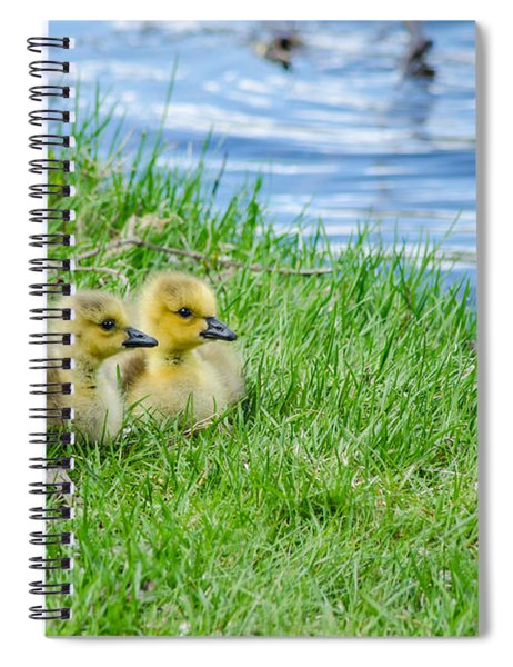 Staying Together Spiral Notebook