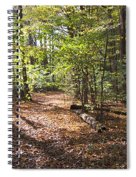 Scared Grove 2 Spiral Notebook