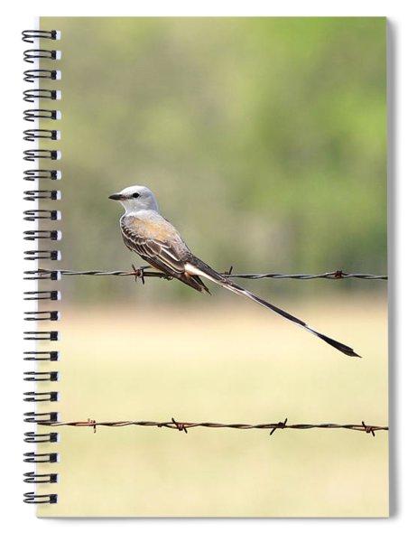 Scissor-tailed Flycatcher Spiral Notebook