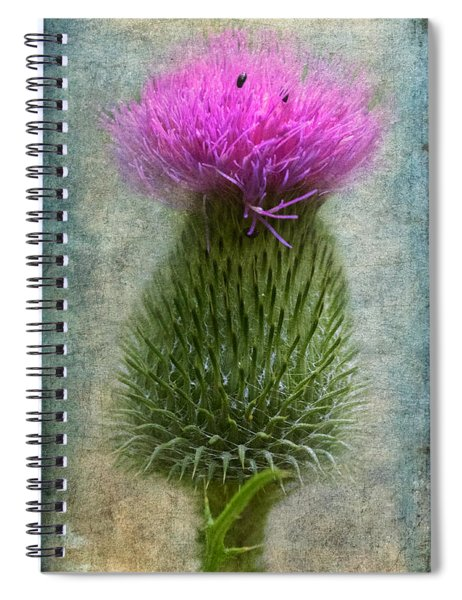 Spiral Notebook featuring the photograph Scotch Thistle by Garvin Hunter
