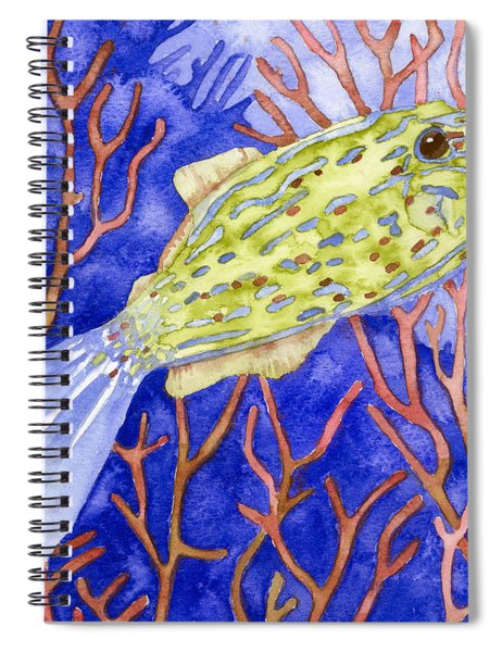 Scrawled Filefish Spiral Notebook
