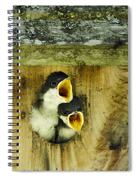Screaming Hungry Spiral Notebook