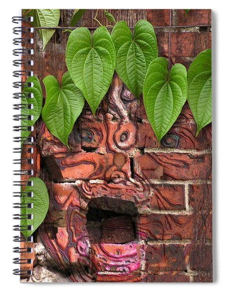 Screaming Wall Spiral Notebook