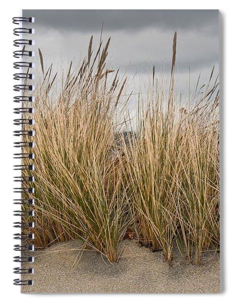 Sea Grass And Sand Spiral Notebook
