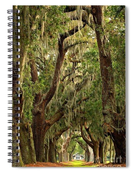 Sea Island Oaks Portrait Spiral Notebook