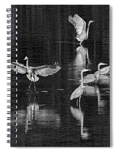 Seabeck Herons Spiral Notebook