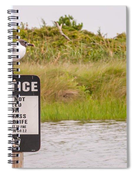 Seagull Standing On A Notice Sign Spiral Notebook by Alex Grichenko