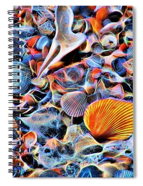 Seashells At The Seashore Spiral Notebook