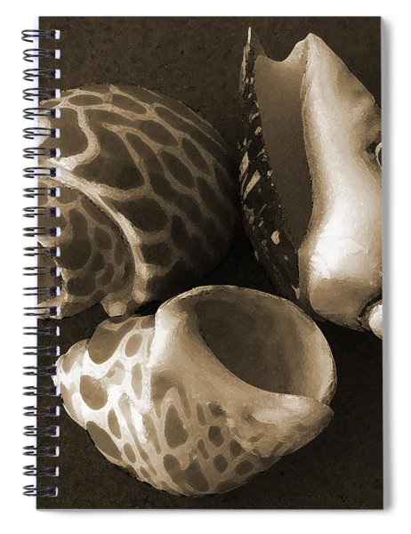 Seashells Spectacular No 1 Spiral Notebook
