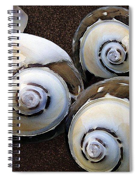Seashells Spectacular No 23 Spiral Notebook