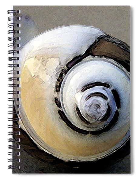 Seashells Spectacular No 3 Spiral Notebook