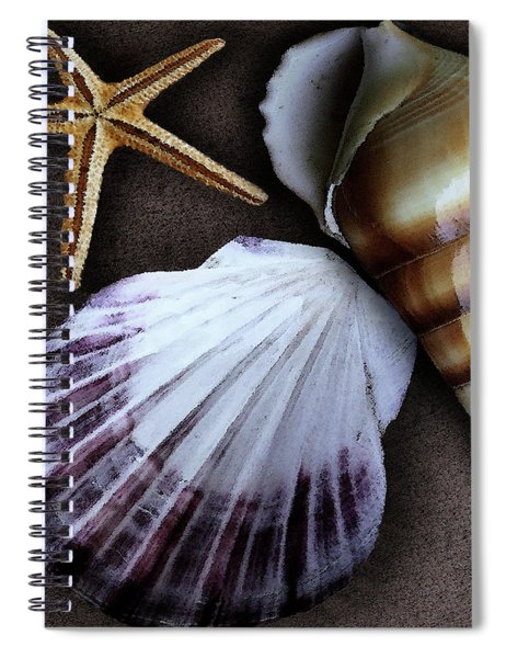 Seashells Spectacular No 37 Spiral Notebook