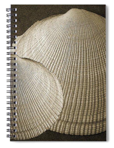 Seashells Spectacular No 8 Spiral Notebook