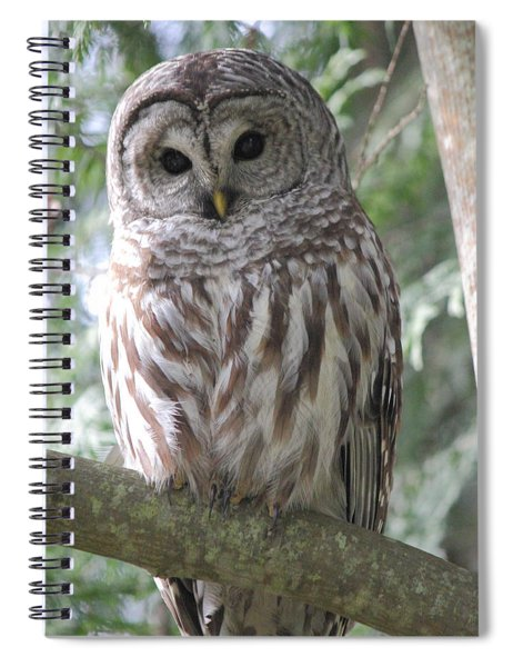 Security Cam Spiral Notebook