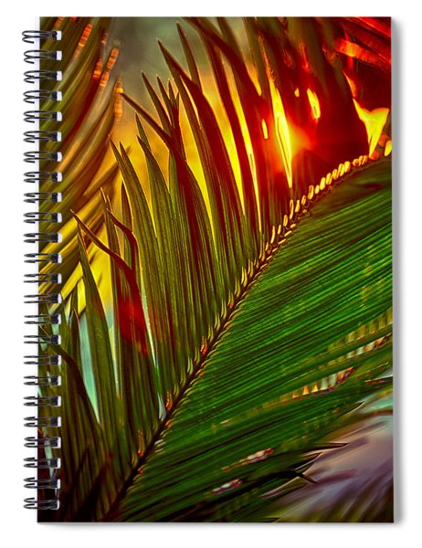Sego Frond Fire Spiral Notebook