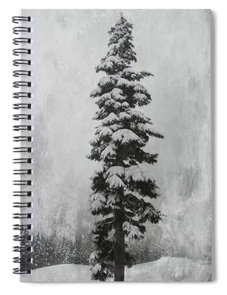 Sentinel Spiral Notebook