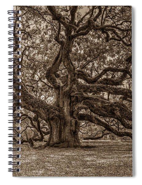 Sepia Angel Oak Spiral Notebook