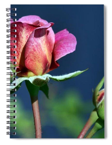 September Rose Spiral Notebook