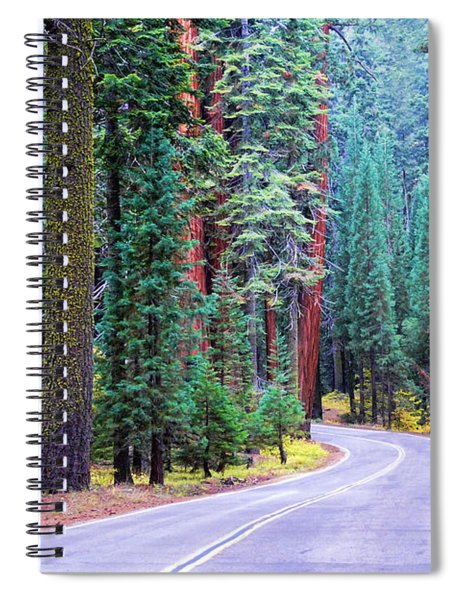 Sequoia Hwy Spiral Notebook
