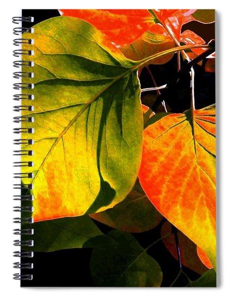 Shades And Shadows Spiral Notebook