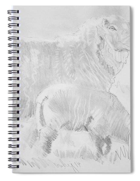 Sheep Lamb Pencil Drawing Spiral Notebook