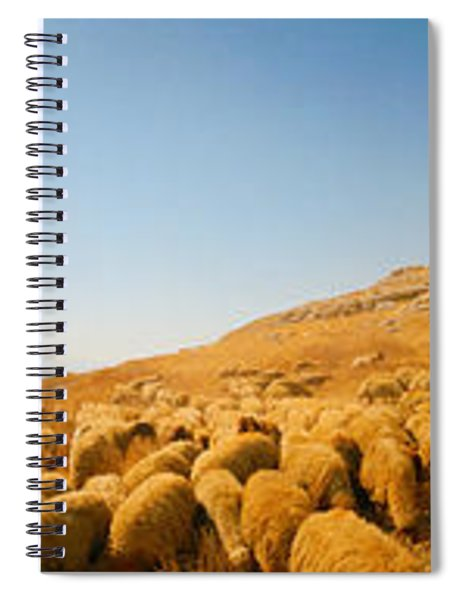 Shepherd Standing With Flock Of Sheep Spiral Notebook