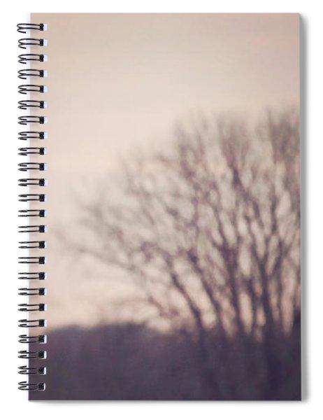 Short Eared Owl At Dusk Spiral Notebook