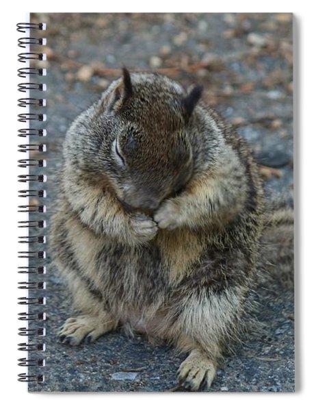 Shy Guy  Spiral Notebook