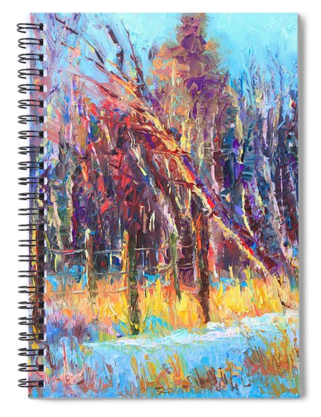 Signs Of Spring - Trees And Snow Kissed By Spring Light Spiral Notebook