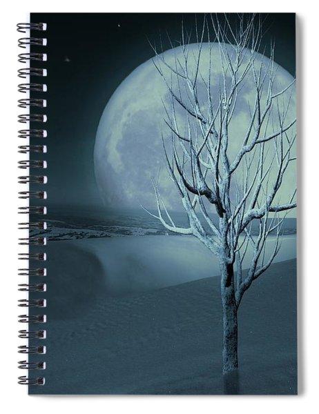 Silent Winter Evening  Spiral Notebook
