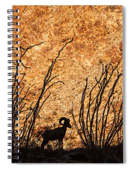 Silhouette Bighorn Sheep Spiral Notebook