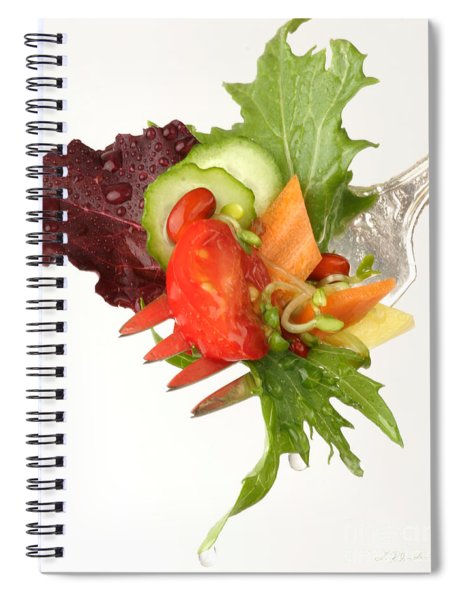Silver Salad Fork Spiral Notebook